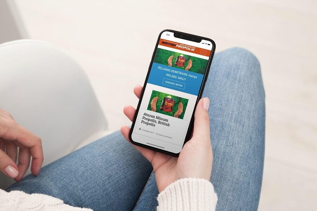 jasa pembuatan website british propolis ippho