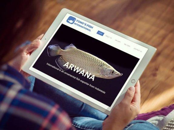 pembuatan webstite export ikan