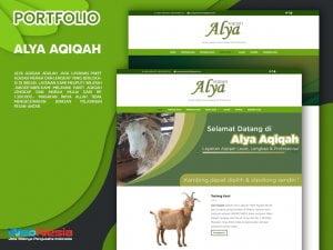 PORTFOLIO ALYA AQIQAH