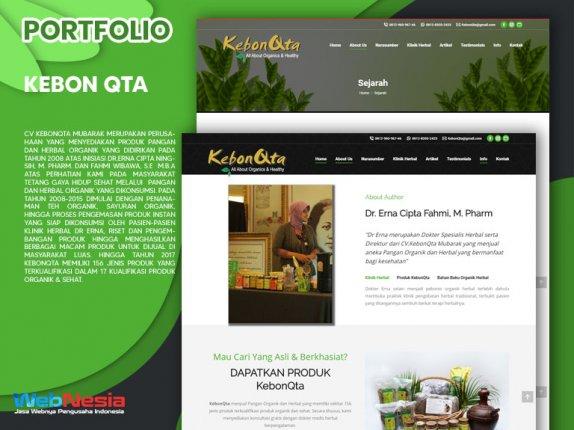 Jasa Pembuatan Website Obat Herbal