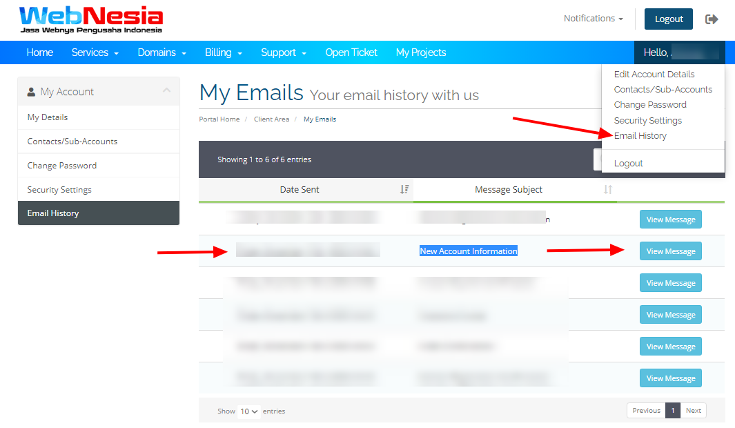 Email History Halaman Client Webnesia
